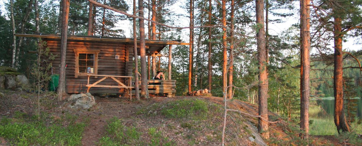 Foto Blockhütte im Wald